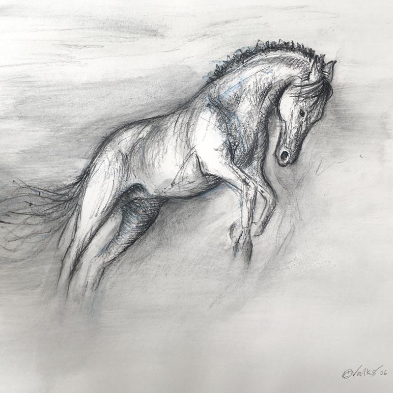 Pencil drawn Horse by Lisa Valks